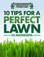 10 tips for perfect lawn